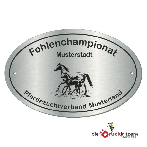 Edelstahl-Plaketten - Oval - 155 x 100 mm